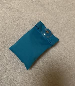 Buddy Pendant Water Resistant Bag