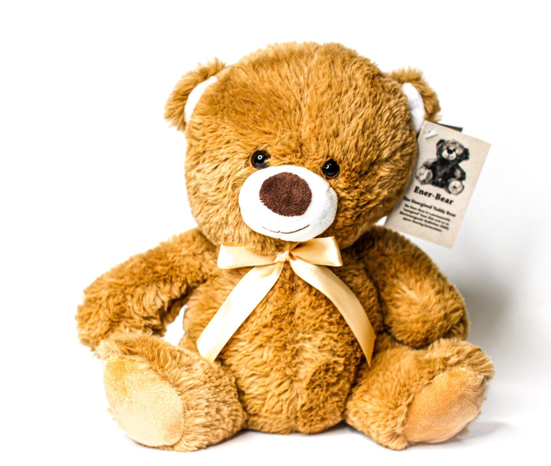 Teddy Bear EMR